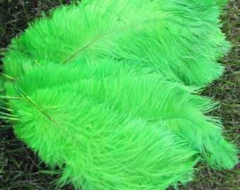 100pcs green Ostrich Feather Plume for Wedding centerpieces,  Samba accessories