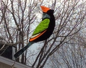 Stained glass bird , orange, gray, black and green. Sun catcher. Window decoration.