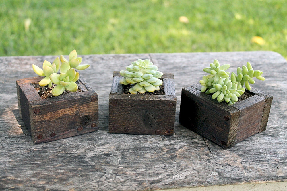 Herb Box Planter Part - 45: ?zoom