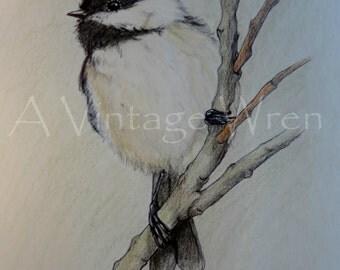 Chickadee art/ Fine art/ Original art/ Bird art