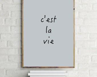 C'est La Vie Print, Inspirational Quote, Modern Art Print, Digital Print, Wall Art