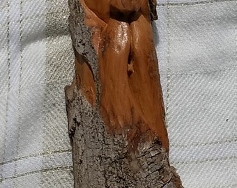 Side Face, whimsical hand carved Cottonwood bark.