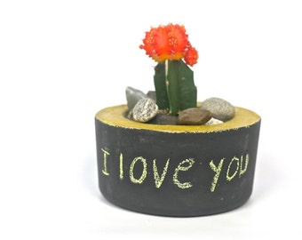Concrete chalkboard planter, Herb planters, Succulent planters, Message on chalkboard, Boho style, Window Herb garden, Candlesticks Holder