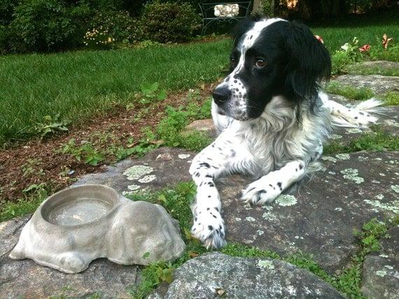 Cement Backyard Dog : Concrete Dog Dish Bowl, Outdoor Pet Bowl, Backyard Dog Bowl, Dog water