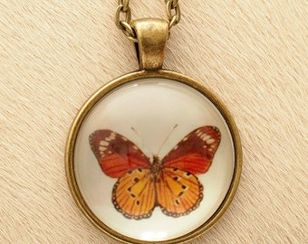 Butterfly 12 - Scientific Illustration - Pendant Necklace - Science Jewelry