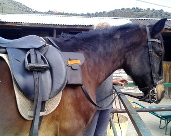 Handmade Leather Saddle Bag / Water Carrier  (for horse saddles)