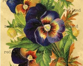 Antique Purple Pansy Bouquet - Digital Download Vintage Pansy Print