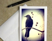 raven greeting card, raven stationary, bird greeting card, raven photo notecard, Halloween card, bird greeting card, gothic photo card