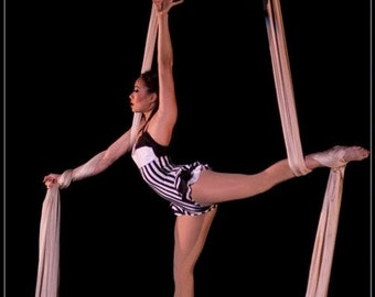 Vertical Stripe Aerial Costume,  Black and White Leotard Bodysuit, Custom Trapeze Costume, Made to Order