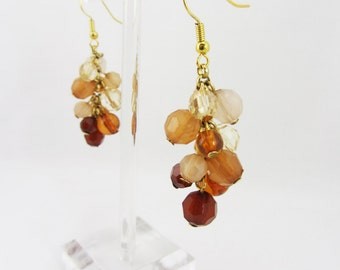 Browns and Gold Cluster Earrings