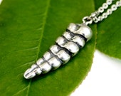 Rattlesnake Tail Necklace in Solid Sterling Silver Rattlesnake Tail Rattle Sterling Silver Rattle Snake Jeweley 112