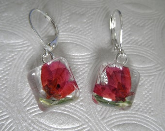 Ombre Pink Boronia, Moon Shadow Euonymus Leaves Pressed Flower Glass Square Shaped Earrings-Gifts Under 25-Symbolizes Admiration, Solitude