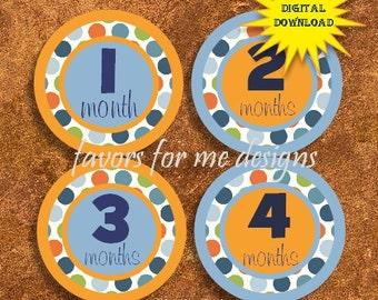 Printable Digital Baby Months 1 - 12  **INSTANT DOWNLOAD**