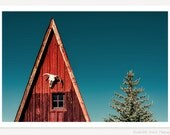 Alpine A-Frame - Cow Skull Photograph - Southwestern Rustic Wall Art - Old West Americana Photography - Western Cabin Photo - Red White Blue