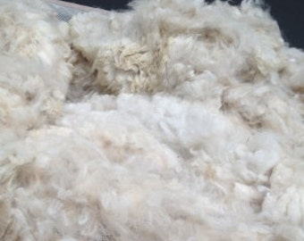 Washed White Alpaca Fiber