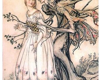 The Old Woman In the Woods,  Arthur Rackham, Vinatge Art Print