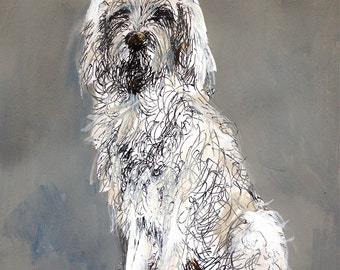 Spinone dog, original ink & paint on paper