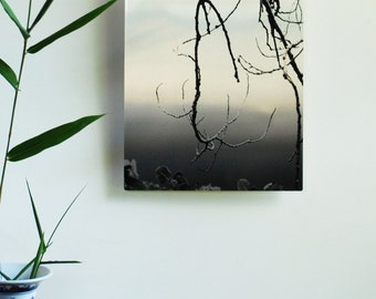 Branch Silhouette, Zen Decor, Meditative Image, Mirror Photo, Photo on metal, metal print