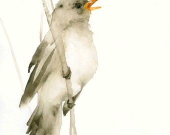 Bird Art Card Songbird Blank Greeting Card