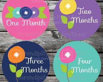 Set of Baby Monthly Stickers Girl Flowers Baby Milestone Stickers Baby Month Stickers Baby Bodysuit Sticker Baby Shower Photo Prop