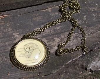 Brain Necklace--Psychiatry Psychology Neurology Anatomy Therapy Gift--Graduation Gift--Vintage Dictionary Print Handmade Jewelry