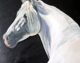 """Original Oil Painting: White Horse on Black Background """"Andalusian Majesty"""""""