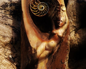 5 x 8 Print - Art Card,The Nature of Self, Woman and Spiral Sculpture, By Shaping Spirit