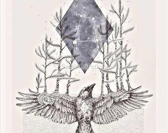 The Crow, Corvus - 11x14  geometric constellation raven art print