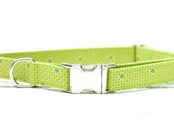 Male Dog Collar, Female Dog Collar, Lime Green, Plaid, Boy with Metal Buckle