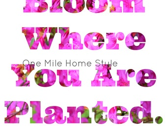 Bloom Where You Are Planted - Printable Art