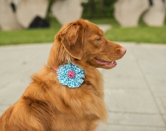 Dog flowers, Dog collar flower, dog collar, Dog flower, pet, dog collar bling, collar Flower, Wedding Dog Flower, Bows for Dog, Dog Bow