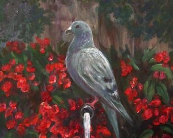Pigeon (art print)