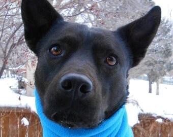 Dog neck warmer, aqua blue snood, scarf, cowl, gaiter, neckwarmer, tube scarf; lightweight fleece pet scarves