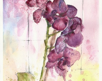 Violet purple orchid watercolour watercolor painting
