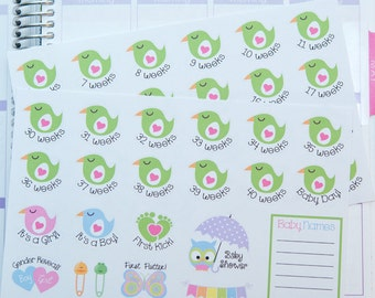 Pregnancy Planner Stickers - Weekly Countdown & Events {FHB300}