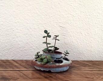 Succulent Planter | Herb Planter | Rustic Home Décor