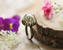 Real flower ring,  Queen annes lace , nature jewellery , terrarium ring , white floral , pressed flower , gift from Ireland , dainty ring #1