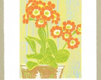 Auricula flower Linocut print - Dusky Orange - Original Limited Edition Linocut Reduction Print