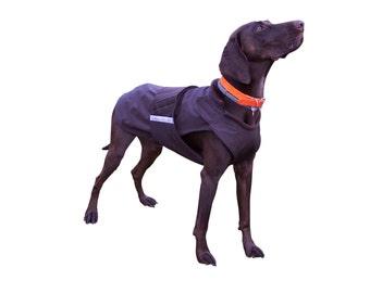 SoftShell Dog Coat - Winter Dog Clothing - Custom Dog Coat - SoftShell/ Fleece Coat - Custom made for your dog