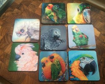 Parrot coasters featuring original artwork
