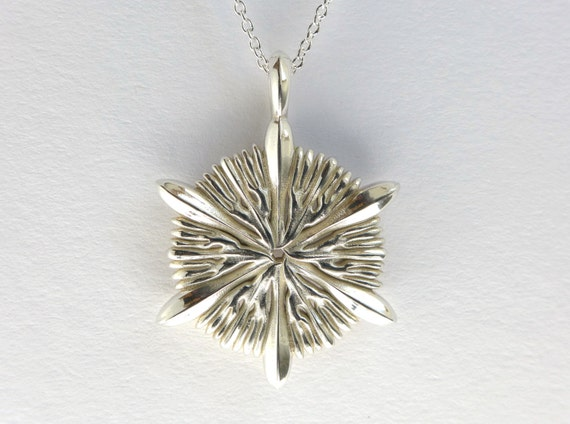 Coral Astrocyathus pendant - marine biology - science jewelry in bronze, brass & silver