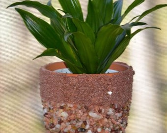 Pebble and Sand Flower Pot