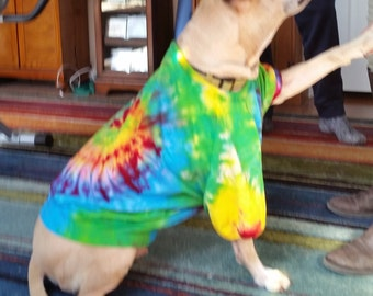 Rainbow Spiral Doggie T-shirt