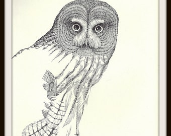 Great Grey Owl Book Print (1972), Frameable Wall Art, Vintage Black White Ink Drawing, Bird Watcher Gift, Nature Home Decor, Masculine Image