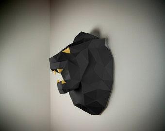 Lion hunting trophy