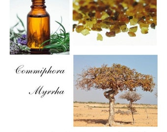 Myrrh Essential Oil, Myrrh Oil, Myrrh Oil Uses, Essential Oil Myrrh -- 100% Pure Authentic  Myrrh EO