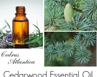 Cedarwood Essential Oil, Cedarwood  Oil, Cedarwood Essential Oil Uses -- 100% Pure Authentic Cedarwood EO
