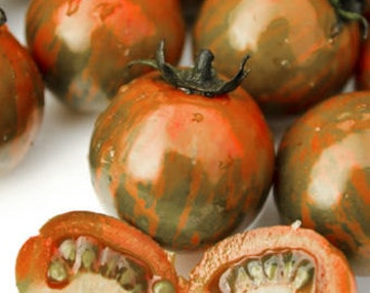 Tigarella Tomaten ,Gemüse Saatgut 10+ Samen aus Eigenanbau