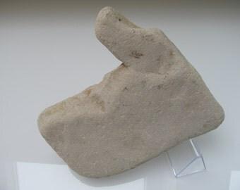 Human Face Sea Stone // Human Facial Profile // Sea & Stone Art Work