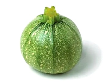 Organic Zucchini seeds, light green round Zucchini heirloom seeds, home grown Ronde De Nice squash seeds, 10 seeds